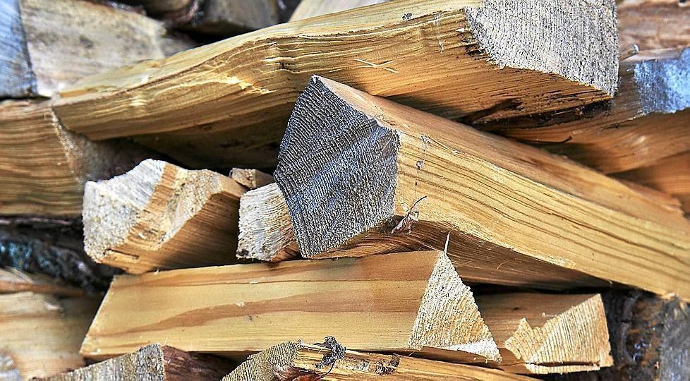 Tiesitkö tämän polttopuista? Halonhakkuun hallitseva Euroopan mestari paljastaa, miten tehdään parhaat polttopuut.