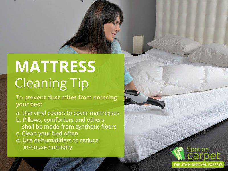Mattress Cleaning Tip To Prevent Dust Mites From Entering Your Bed A Use Vinyl Covers To Cover Mattresses B Mattress Cleaning How To Clean Carpet Used Vinyl