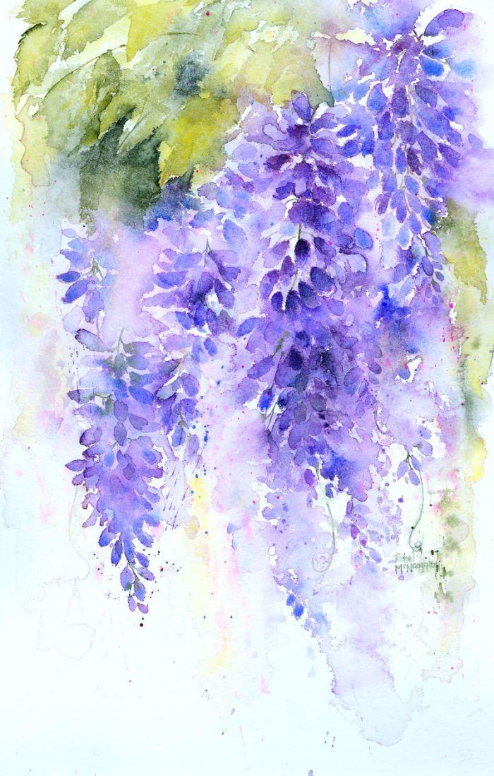 Rachel Mcnaughton Wisteria 2 Jpg Flower Painting Watercolor