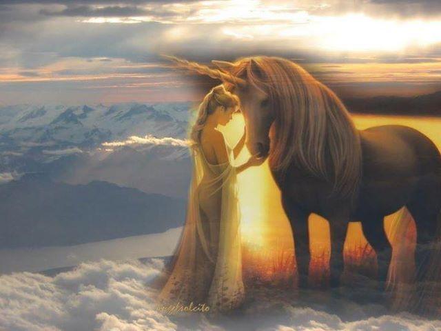 Warmth Unicorn And Fairies Fantasy Fantasy Horses