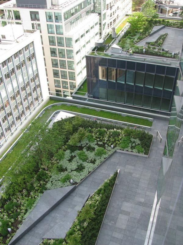 Green Roofs and Great Savings Landscape construction