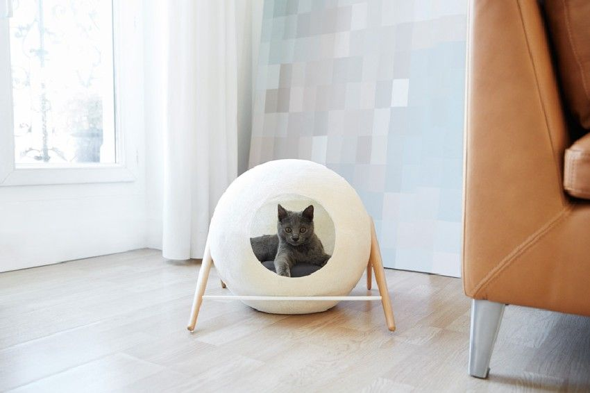 Good Stylish Cat Beds And Cocoons For The Discerning Pet   Http://freshome.