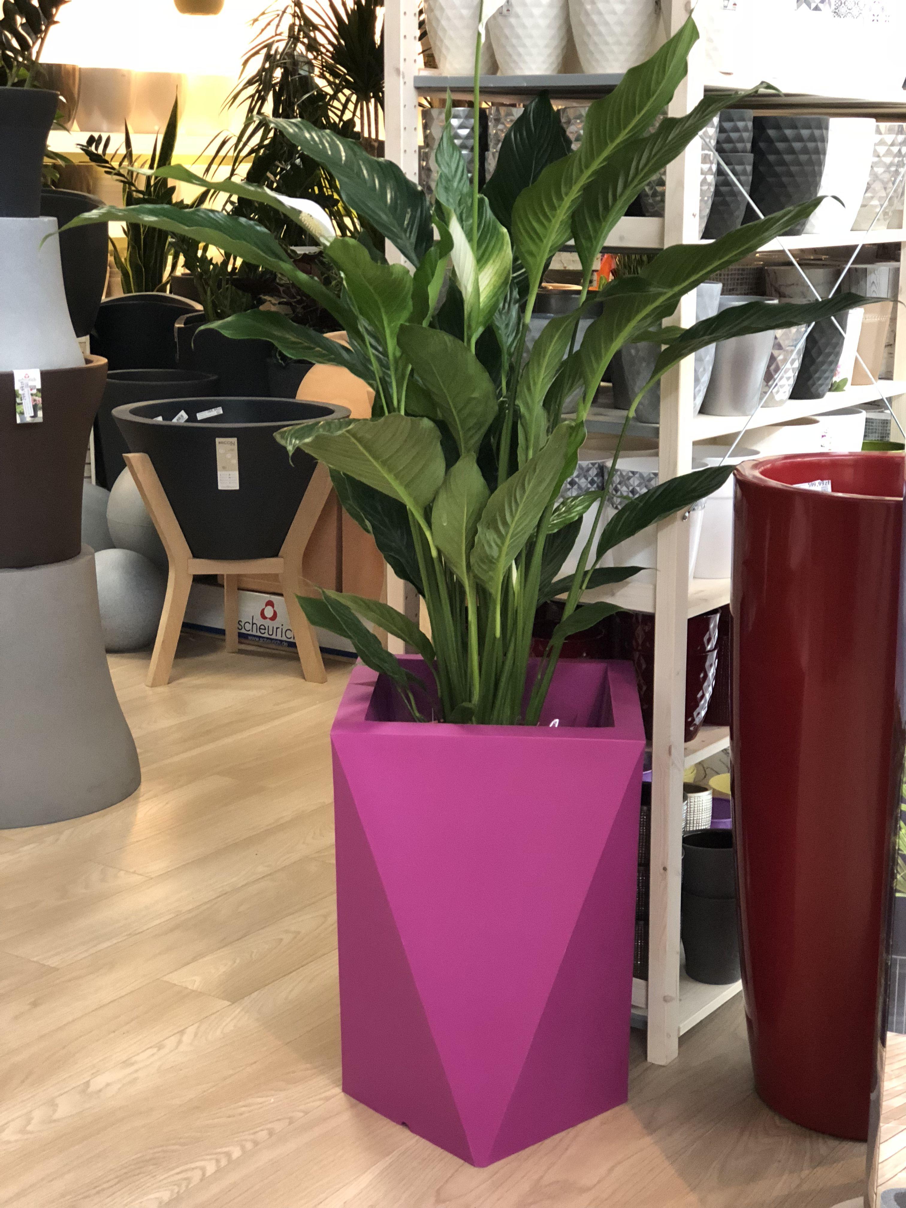 Geometryczna Donica Vaso Planters Planter Pots Plants