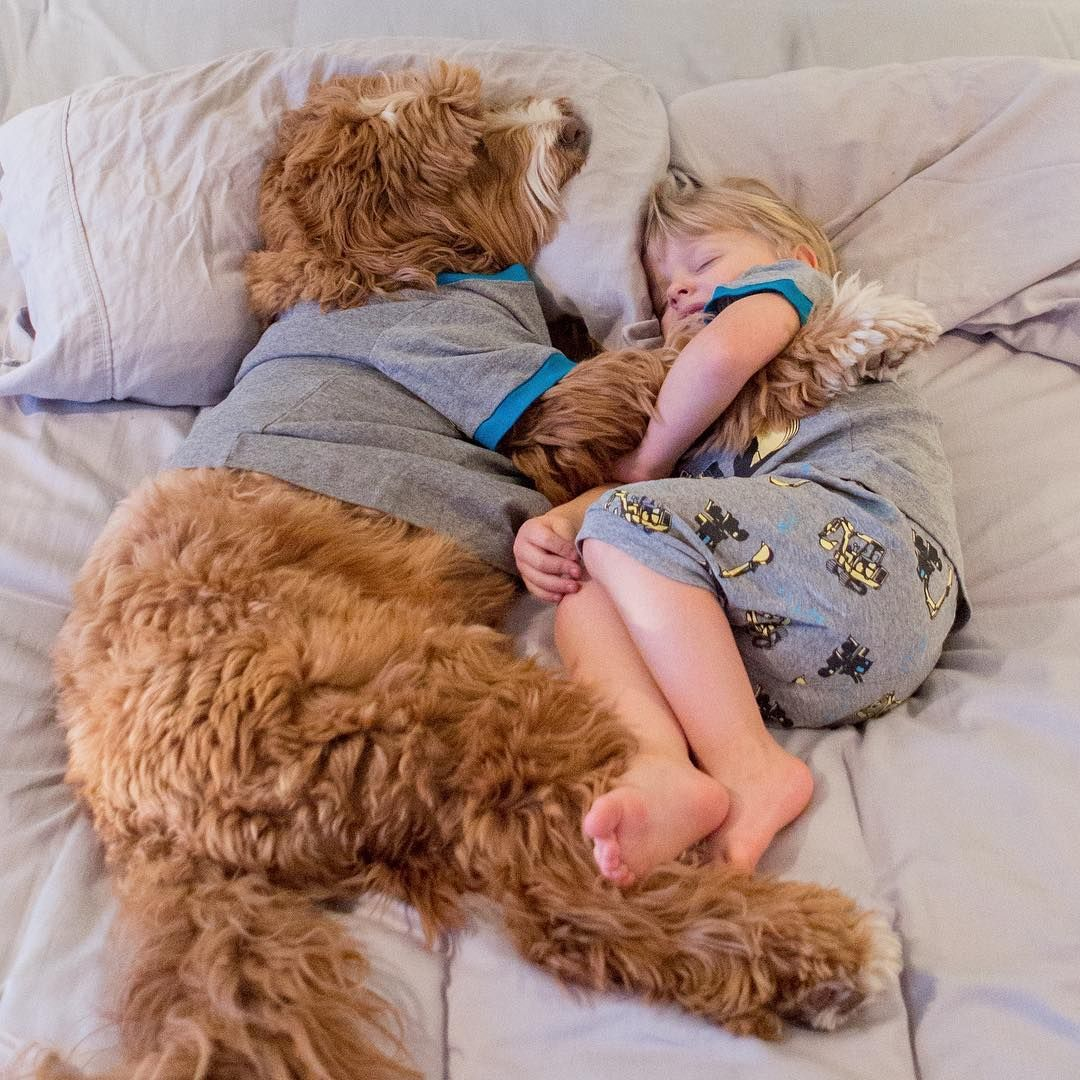 Happiness Is An Afternoon Nap With Your Best Bud Tuesdaysnoozeday Dogs And Kids Happy Animals Animals For Kids