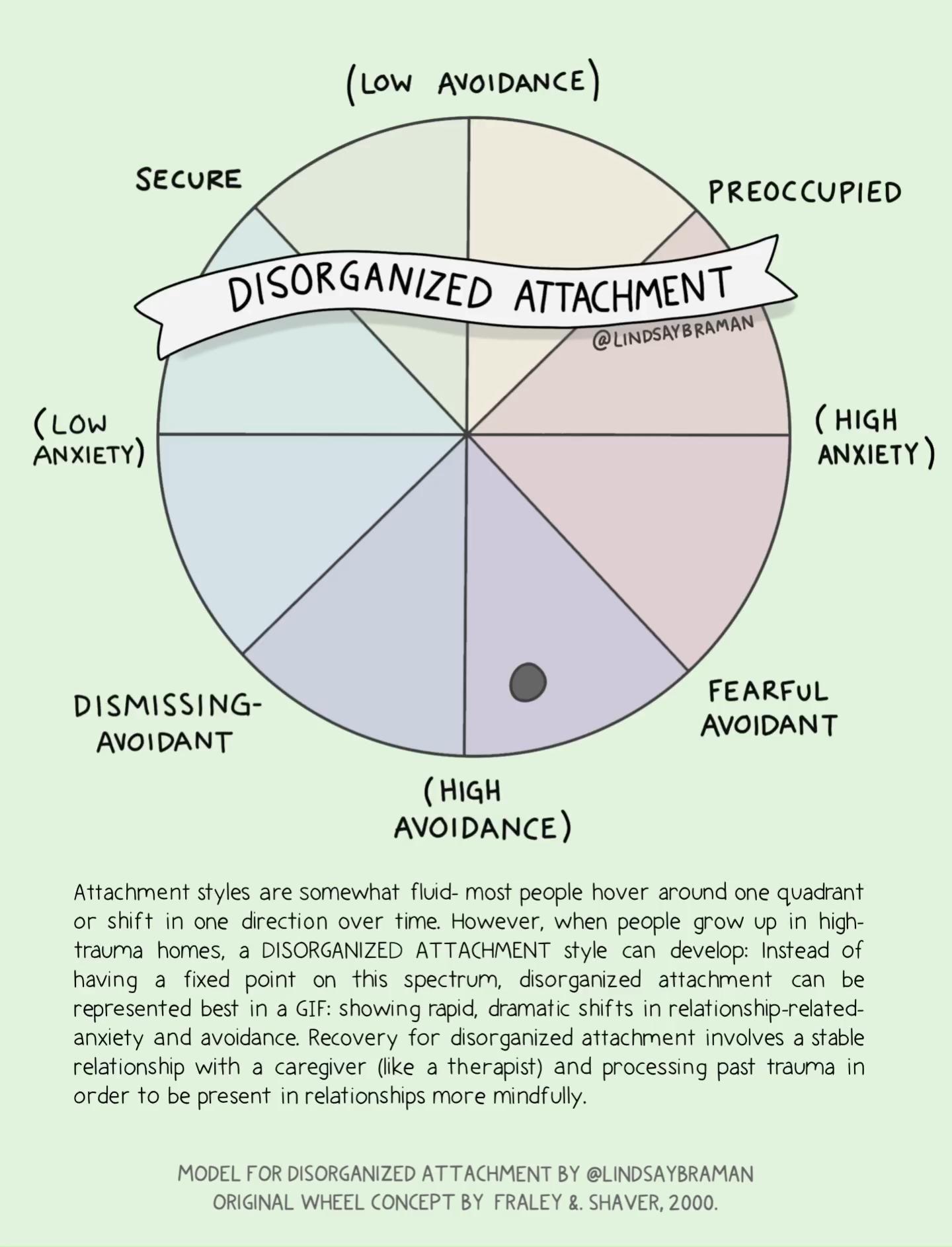 Visual Model for Disorganized Attachment