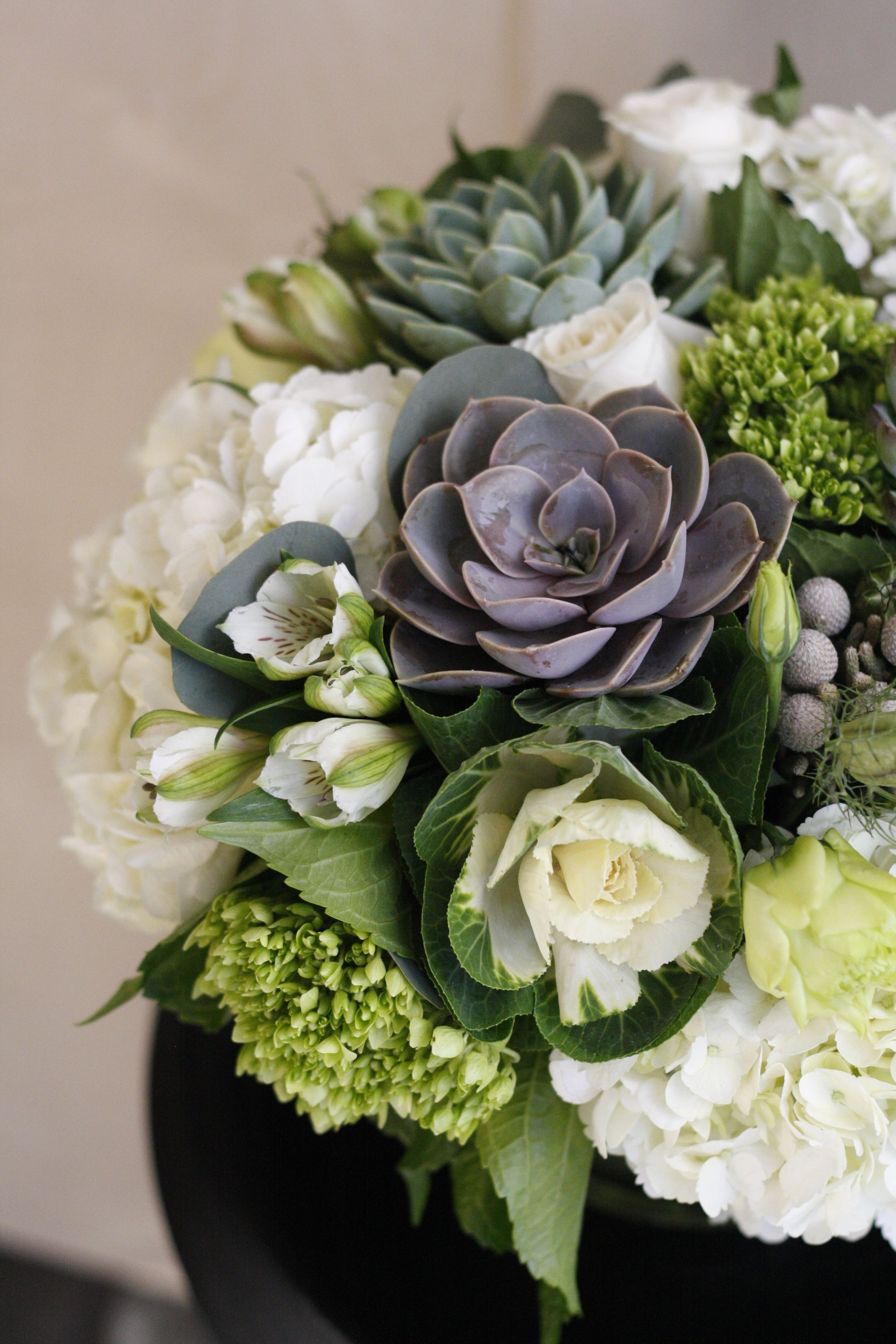 Its succulentsaturday add hearty succulents to next