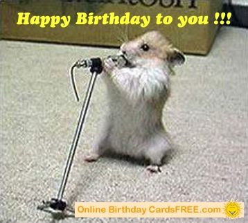 Singing Birthday Cards For Facebook Singing Birthday Cards On Singing Hamster Birthday Card Funny Happy Birthday Pictures Funny Hamsters Cute Hamsters