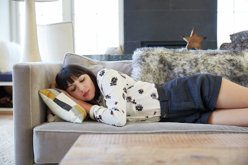 How to catch a cat nap for more brain power sleep help