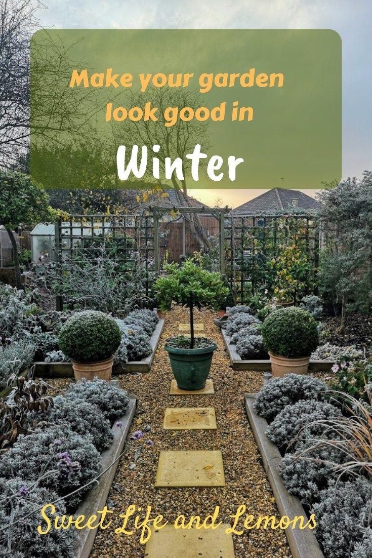 Make your garden look good in winter | Gardening for ...
