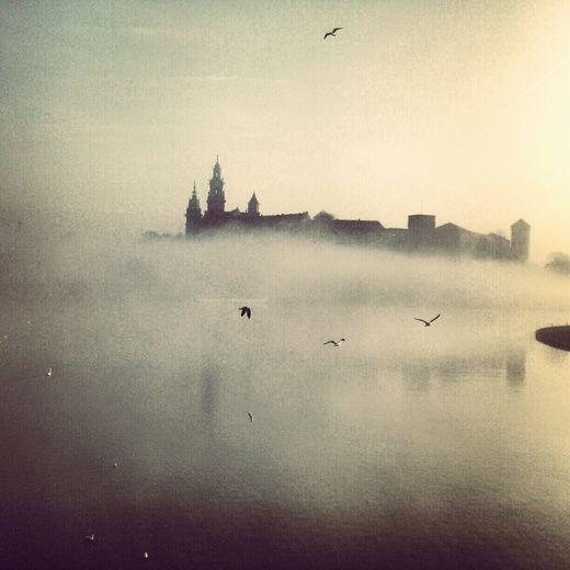 #mist #photography