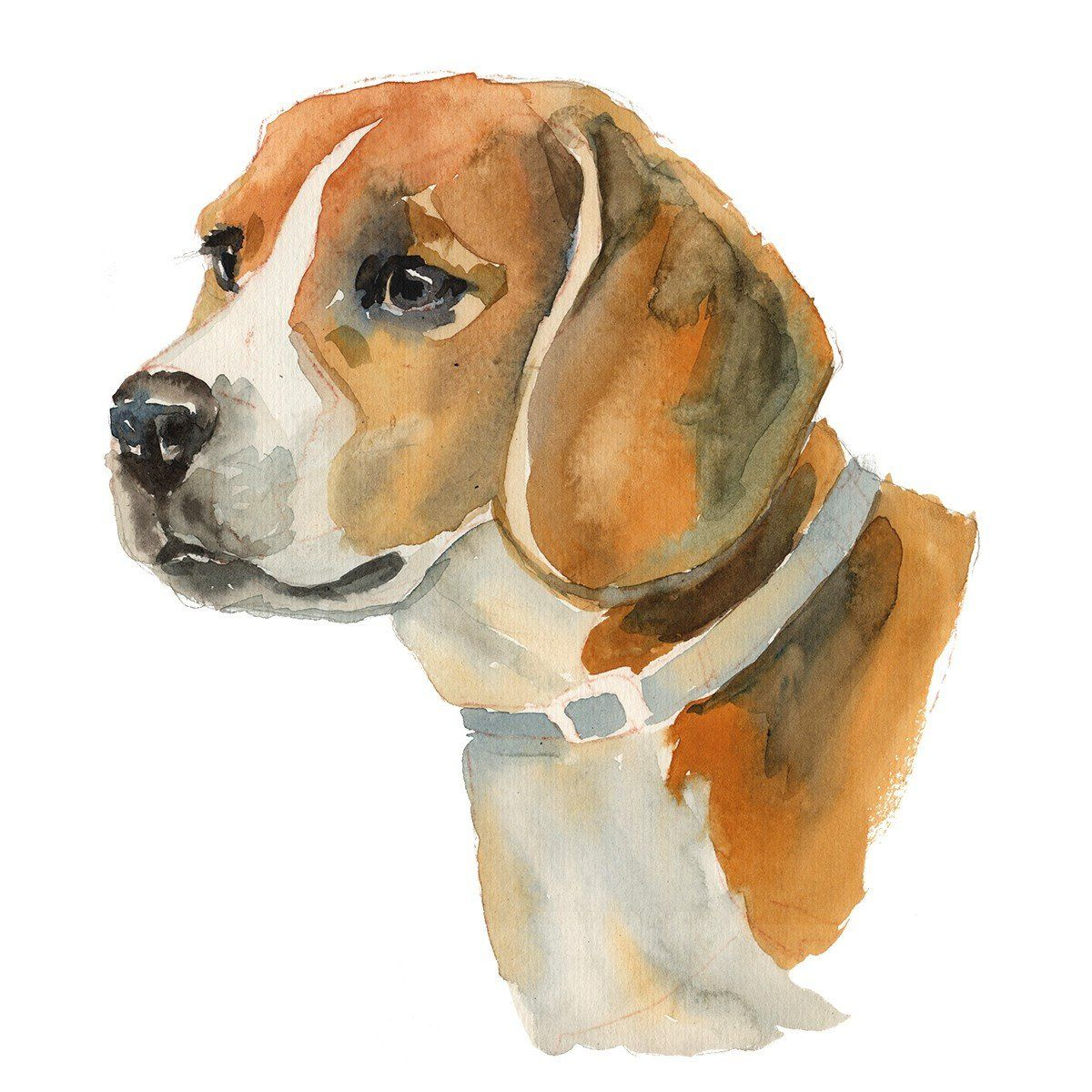 Digital Art Beagle Dog Art Dog Art Watercolor Dog Drawing Cartoon Faces
