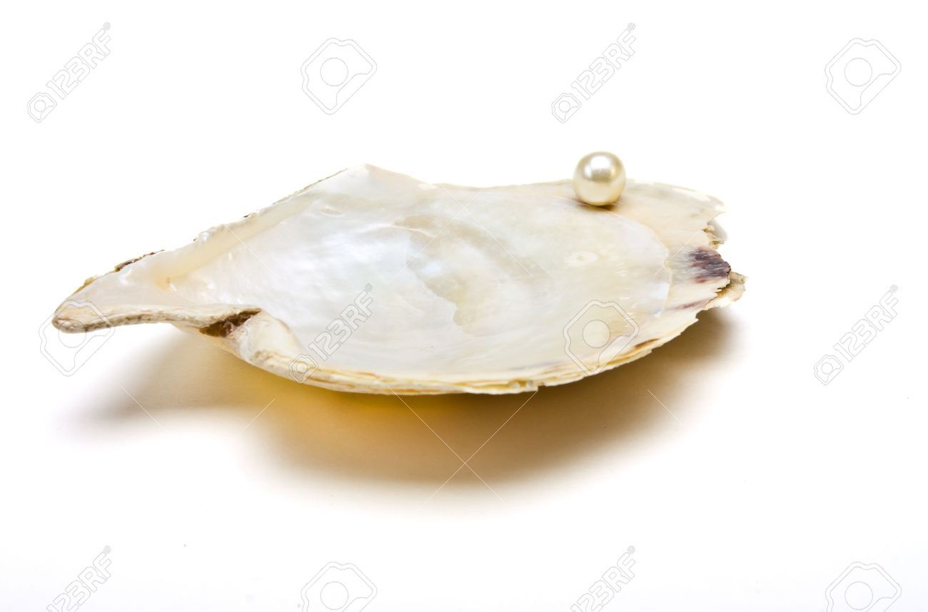 Pearl Resting On Open Oyster Shell To Depict Wealth Concept ...