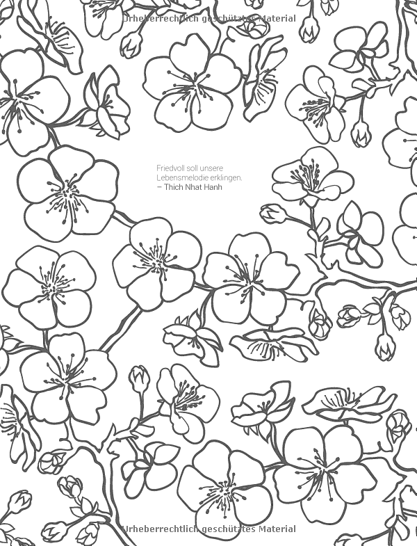 Inspiration Kirschblüte: 50 asiatische Motive kolorieren – Farbe ...