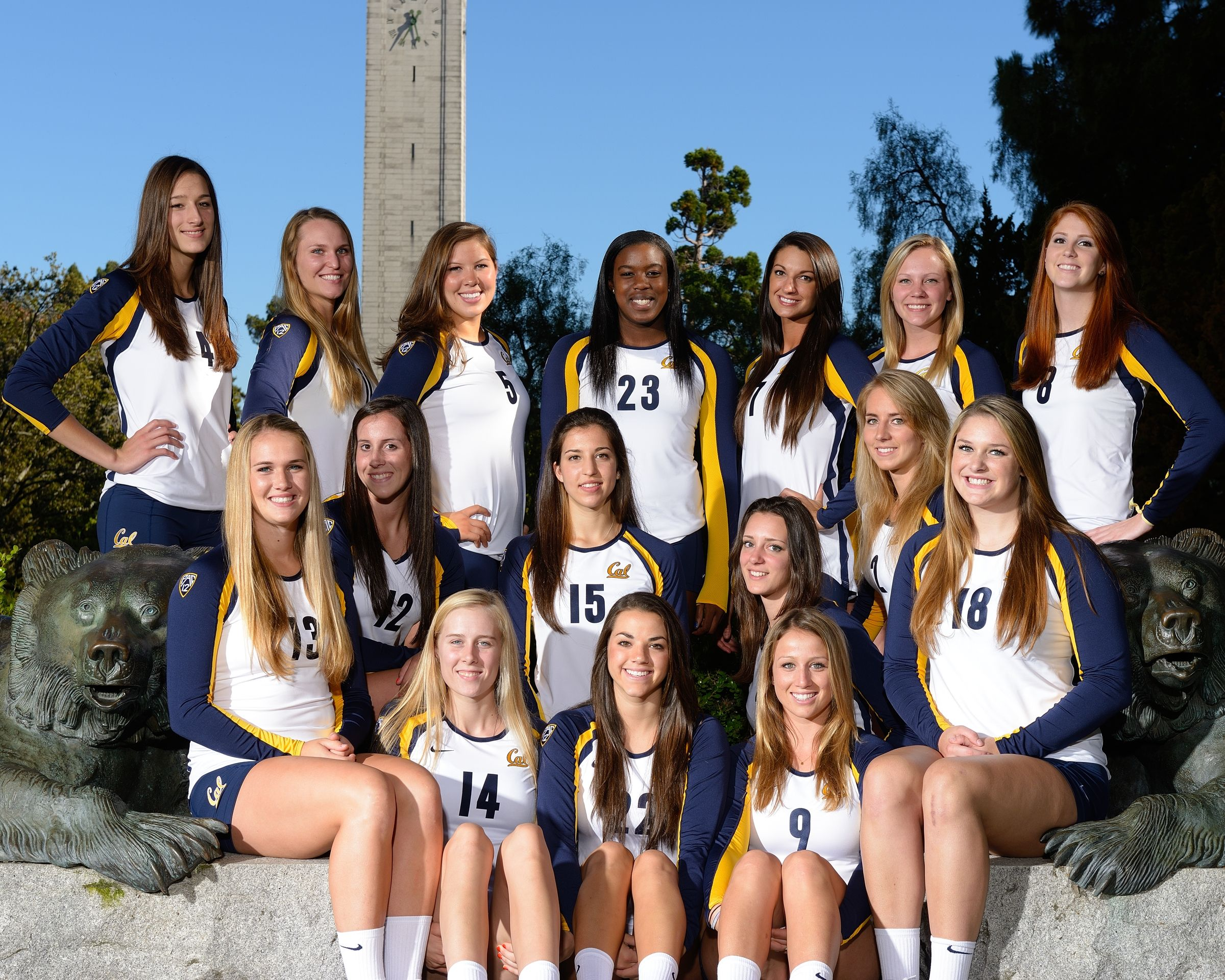 Cal Volleyball Calvolleyball On Twitter Women Volleyball Volleyball California Golden Bears