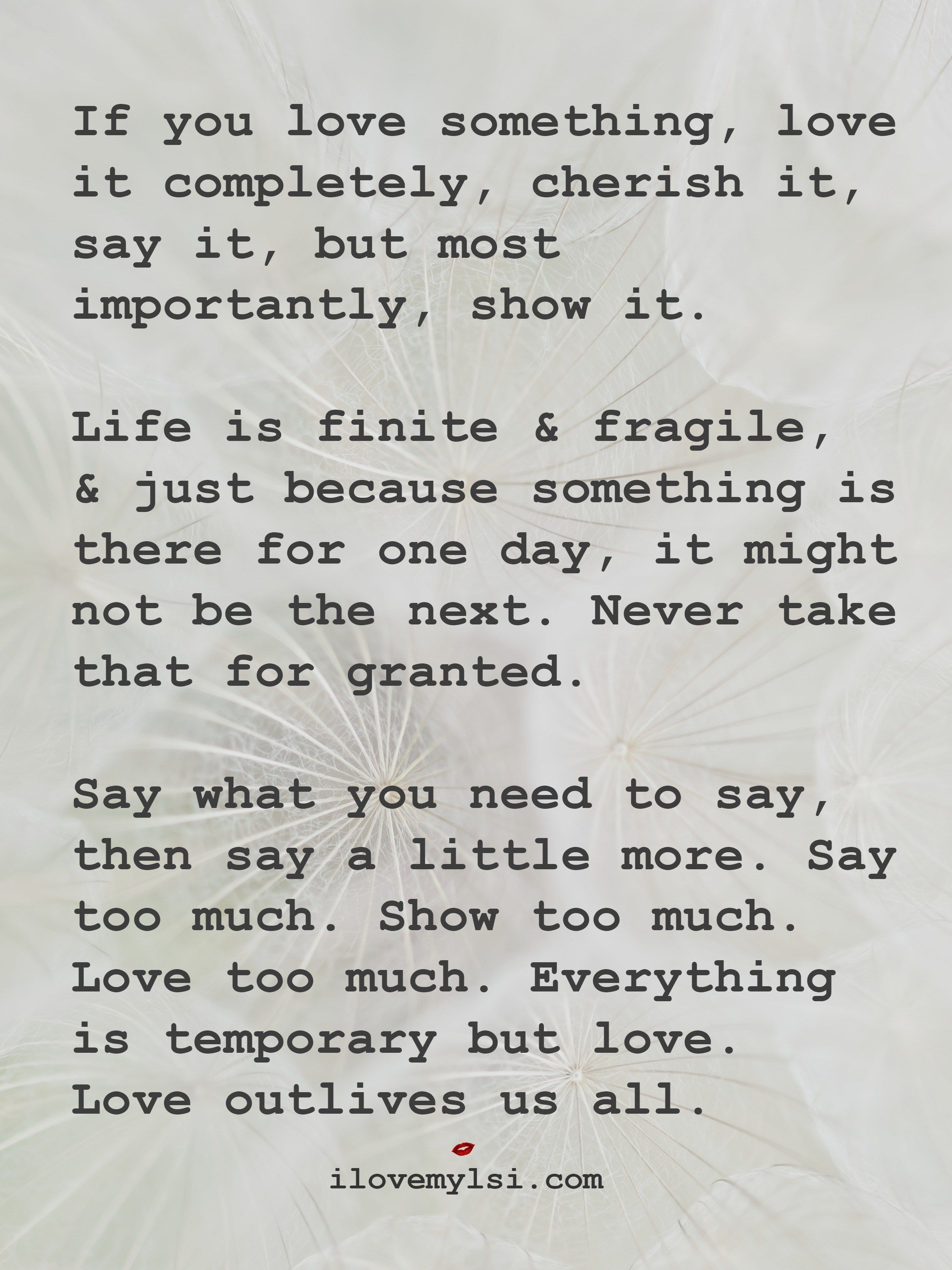 If You Love Something Love It Completely Just Remember Quotes