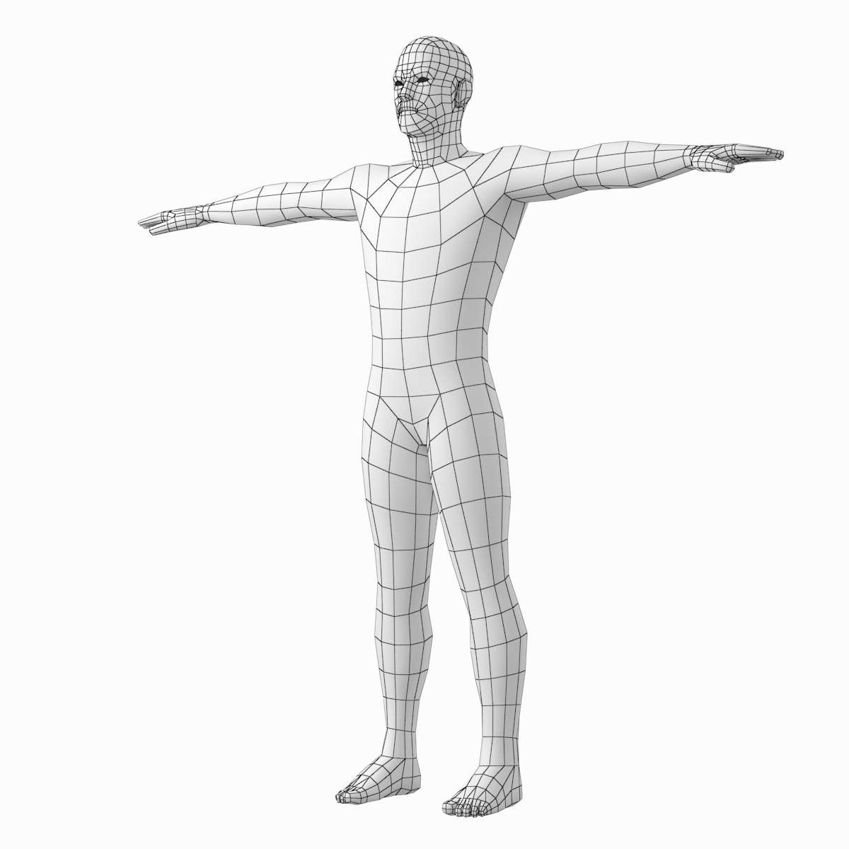 Female And Male Base Mesh Natural Proportions In T Pose Bundle Male Body Poses Photo Reference