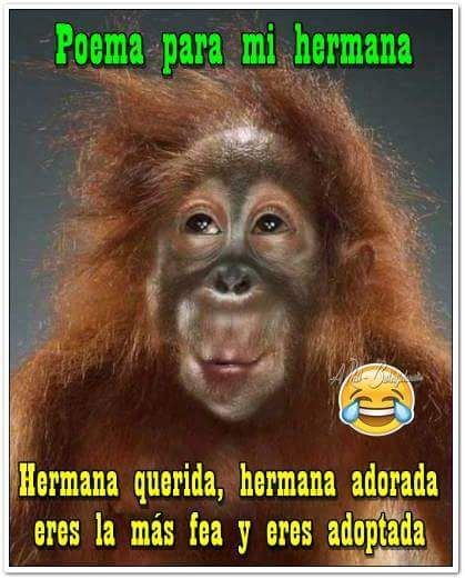 Pin By Laura Moya On A Reir Que Son 2 Dias Funny Spanish Memes Crazy Funny Memes Funny Baby Memes
