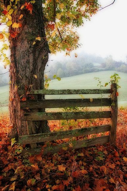 Pin By Gem Junkie Jewels On Weddings Barn Country Farm Autumn Scenery Fall Pictures Beautiful Fall