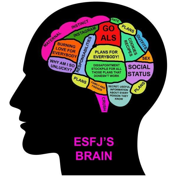 ESFJ's brain @haileybugc