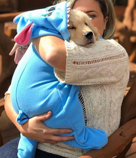 How Do Dogs Choose Their Favorite Person? | DogSpaceBlog