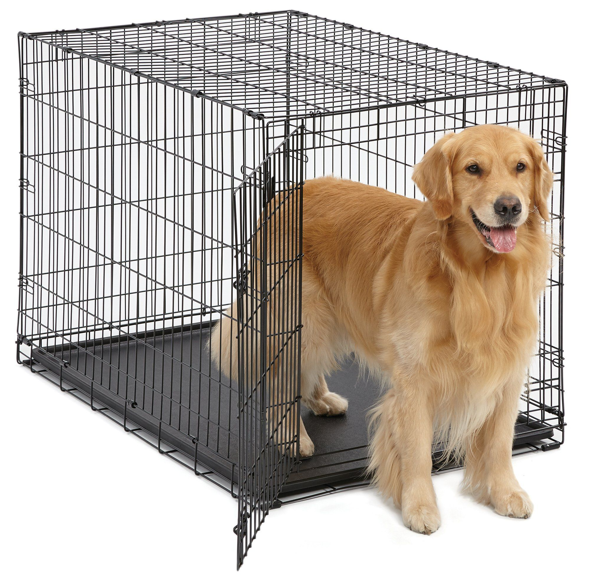 Midwest 42 Icrate Folding Metal Dog Crate W Divider Panel Floor Protectingroller Feet And Leakproof Plastic Tray 4 Dog Crate Folding Dog Crate Dog Crate Sizes