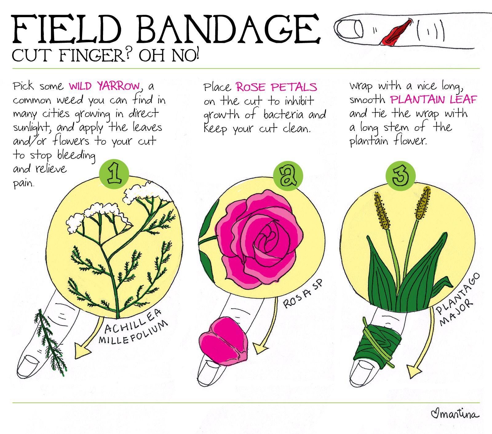 Field bandage.