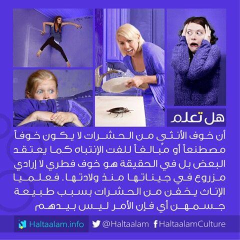 هل تعلم الحمدلله وهاي الدراسات اثبتت هالشي Fun Quotes Funny Funny Arabic Quotes Life Facts
