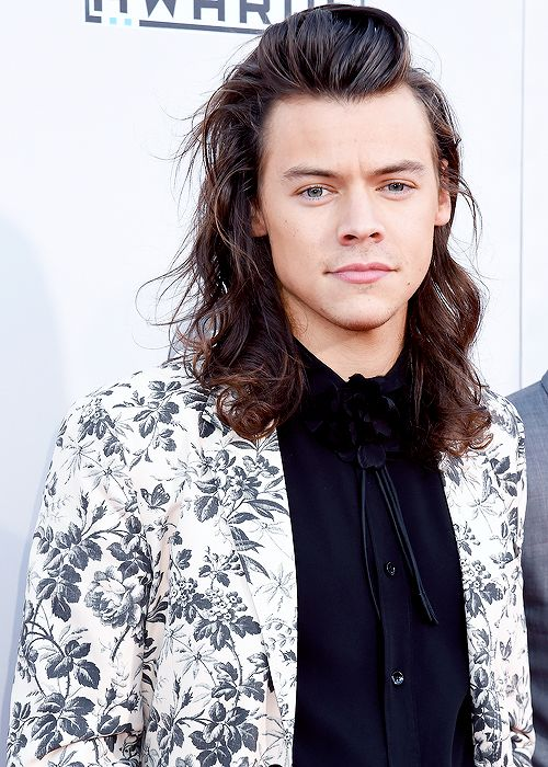 Harry style picture 2015