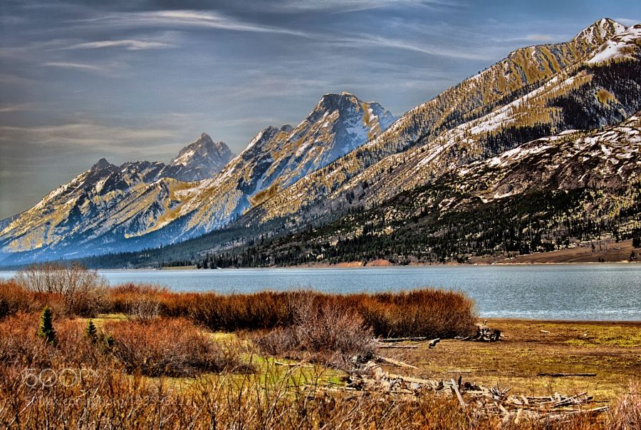 Great Tetons by Mauritta