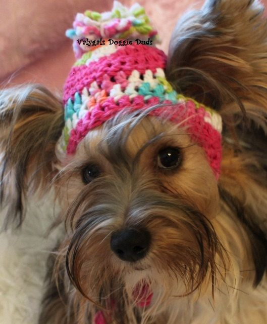 Crocheted Dog Toboggan Hat Sz SM Cotton Candy Multi by valygal d8e9daa0a27
