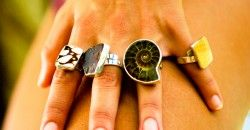 Ocean Goddess Rings, marbel cone shell, sea glass, ammonite, and yellow oyster shell.