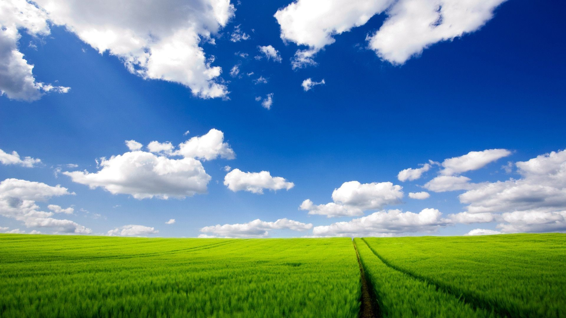 download hd windows xp wallpapers for free | wallpapers | pinterest
