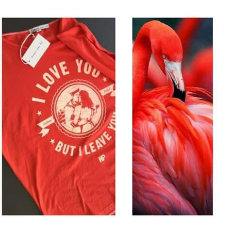 T-shirt I love You but i leave you