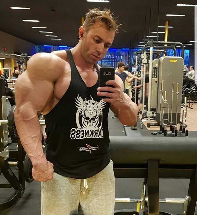 Thiago lins Muscle factory Pinterest Strength and Muscles - fresh arnold blueprint training review