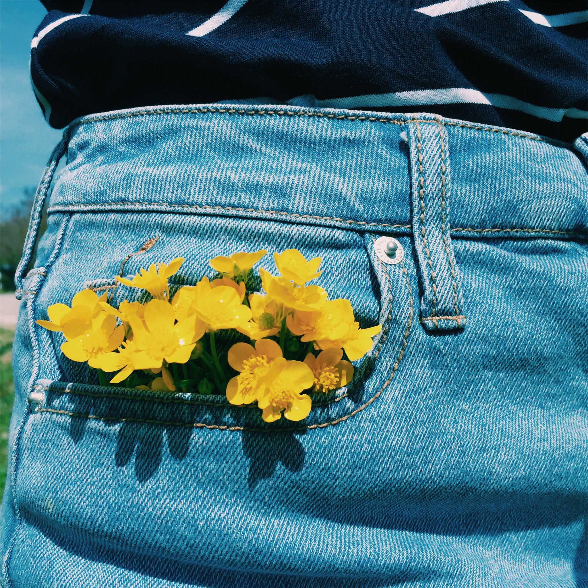 aesthetic pictures blue and yellow