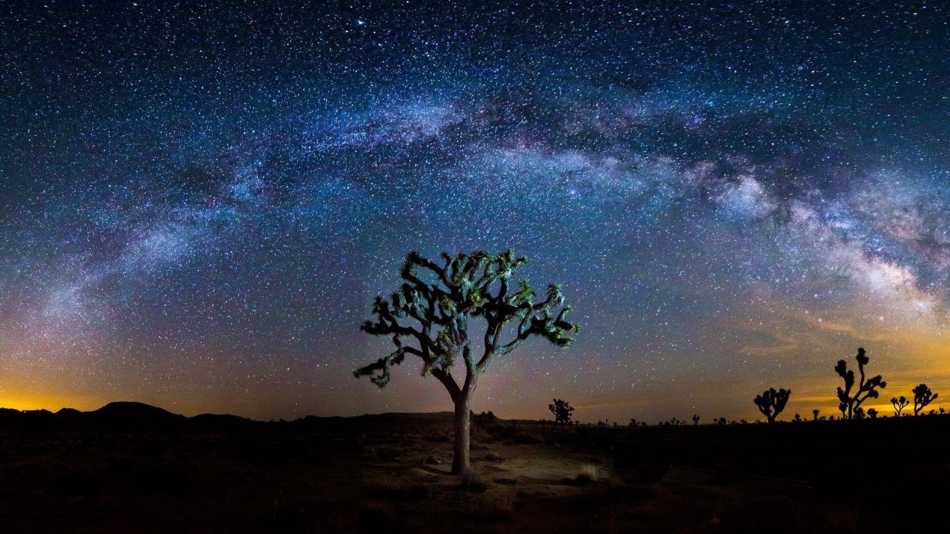 The 13 Most Beautiful Stargazing Spots In America It S
