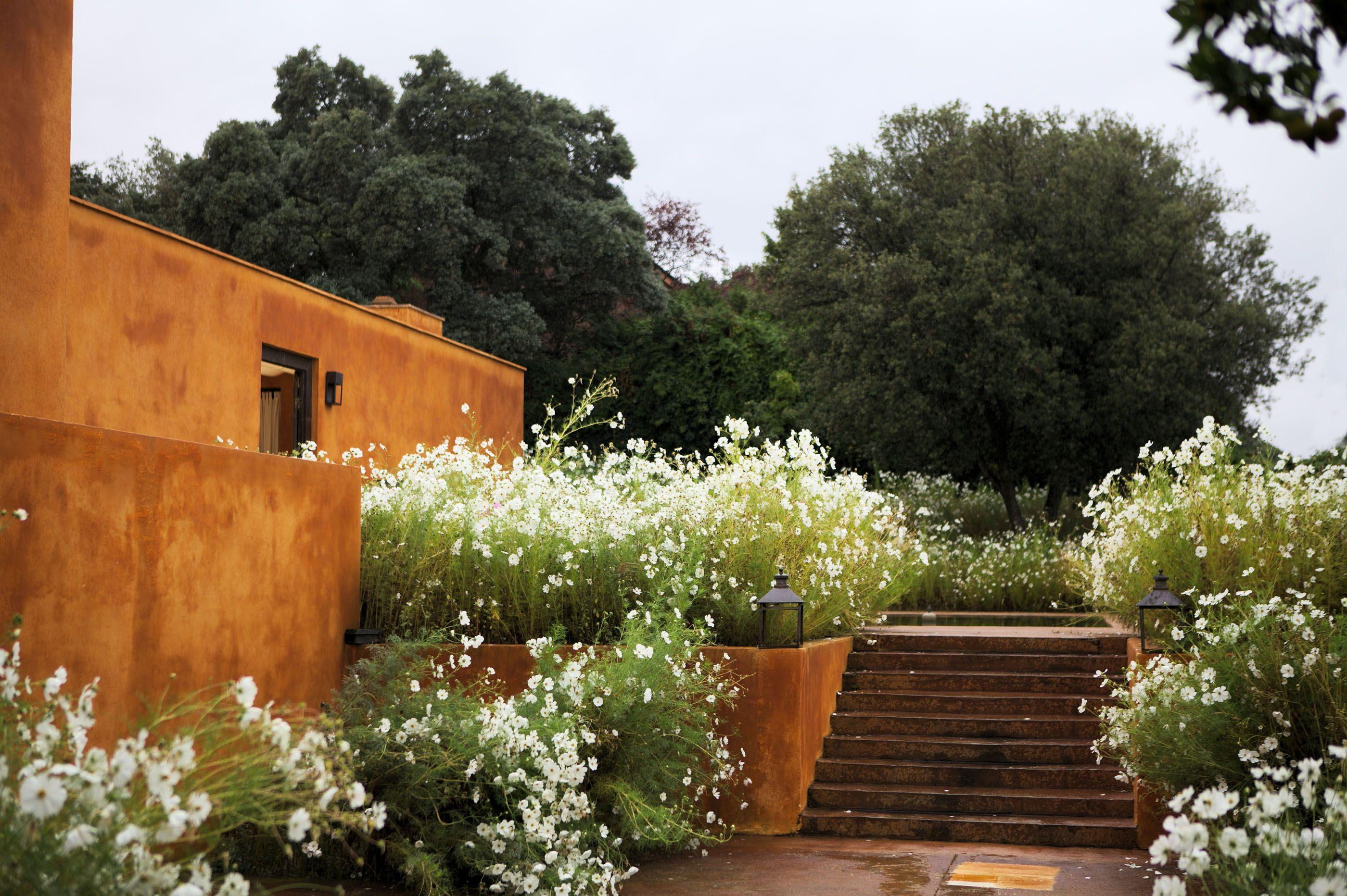Caruncho garden architecture casa caruncho temporal for Paisajismo jardines casas