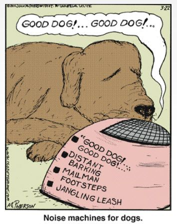 """Comic, Close To Home, dog.........we could have used this with the """"senior moments"""", days, of separation anxiety.