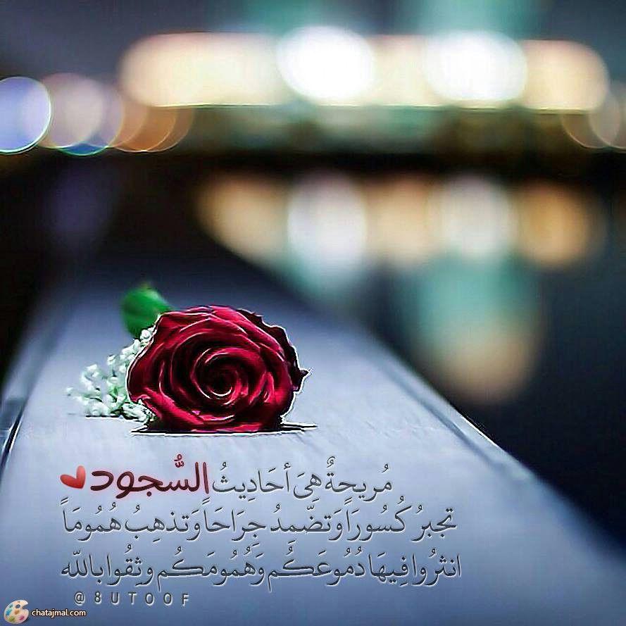 اللهم اجبر كسرنا Spiritual Guidance Beautiful Words All You Need Is