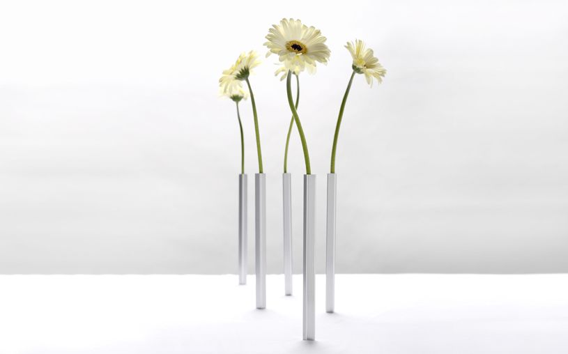 Tall Thin And Elegant This Set Of 5 Magnetic Vases Will Bring A