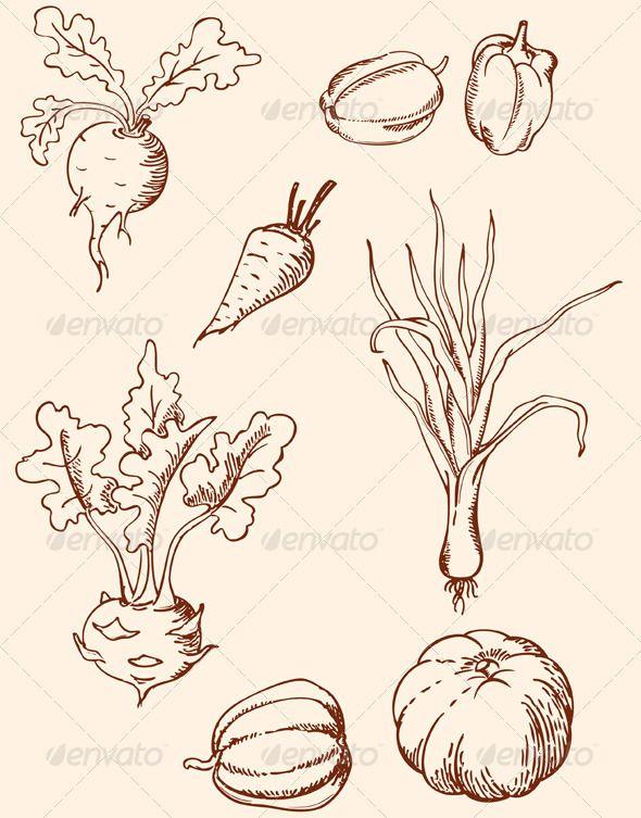 Hand Drawn Vintage Vegetables Dessins D Aliments Dessin Pochoir