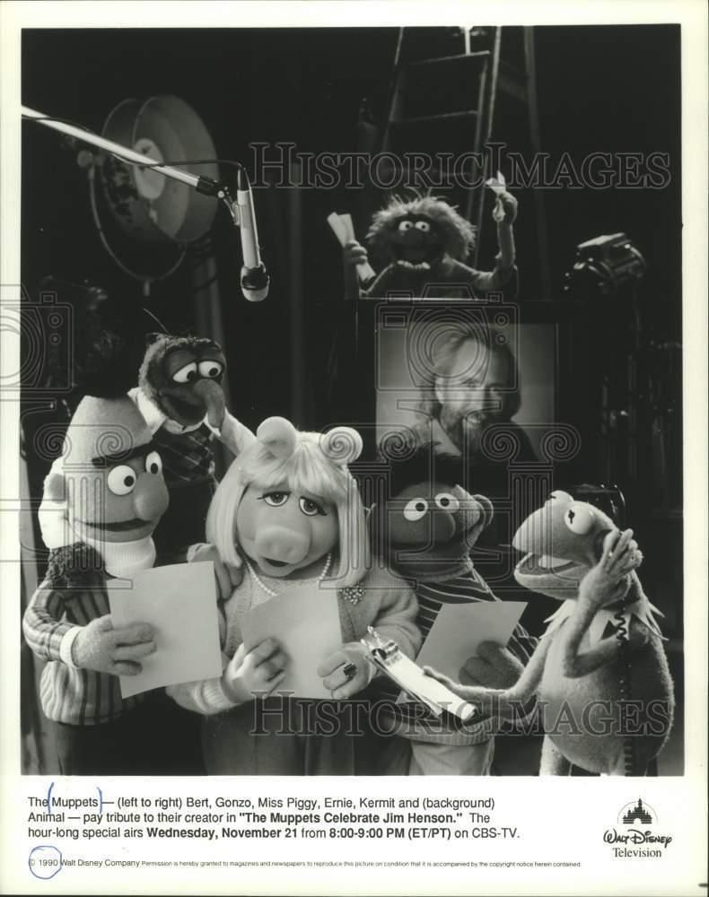 1990 Press Photo The Muppets Characters In The Muppets