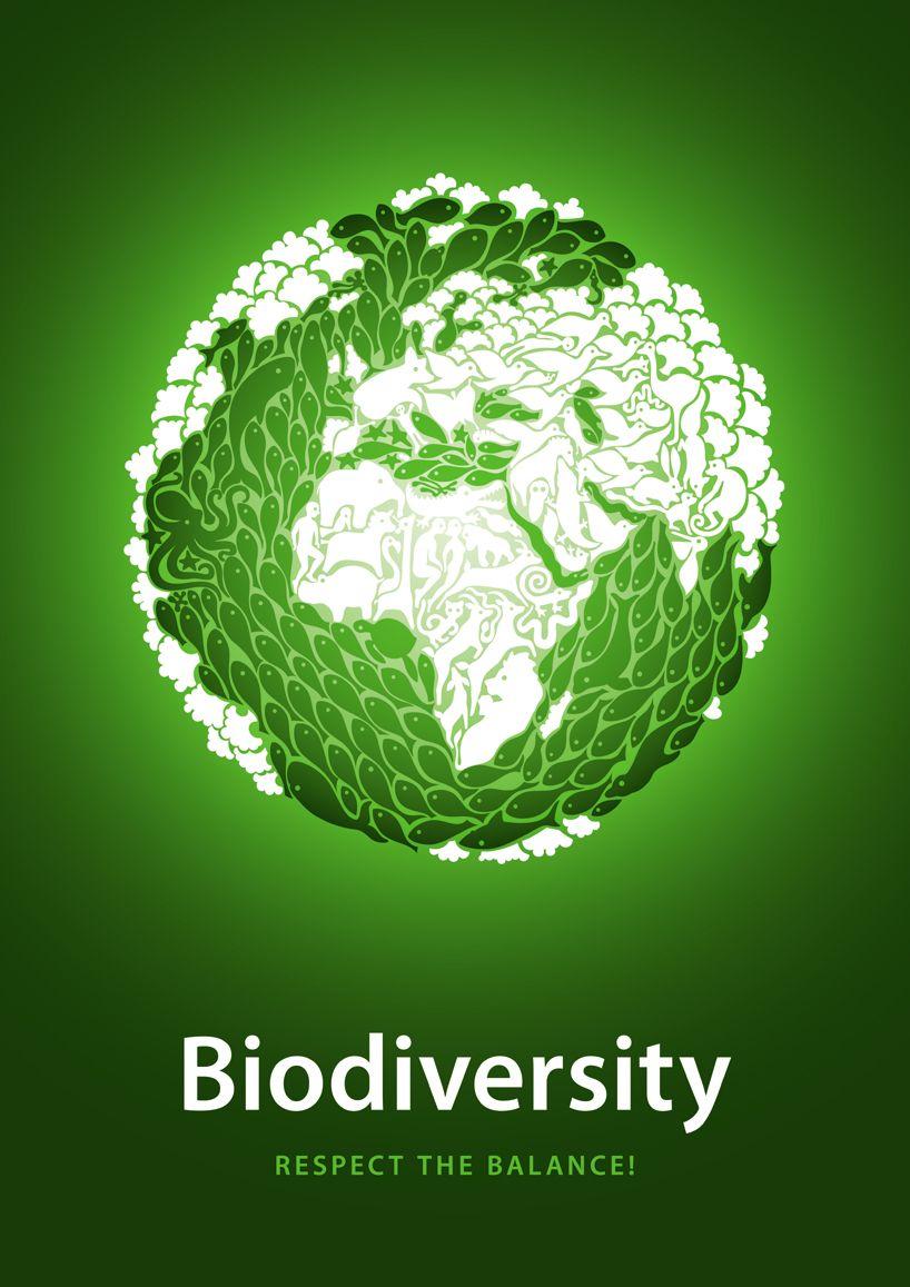 Shortlisted Poster Designs Iida Awards 2010 Biodiversity Poster