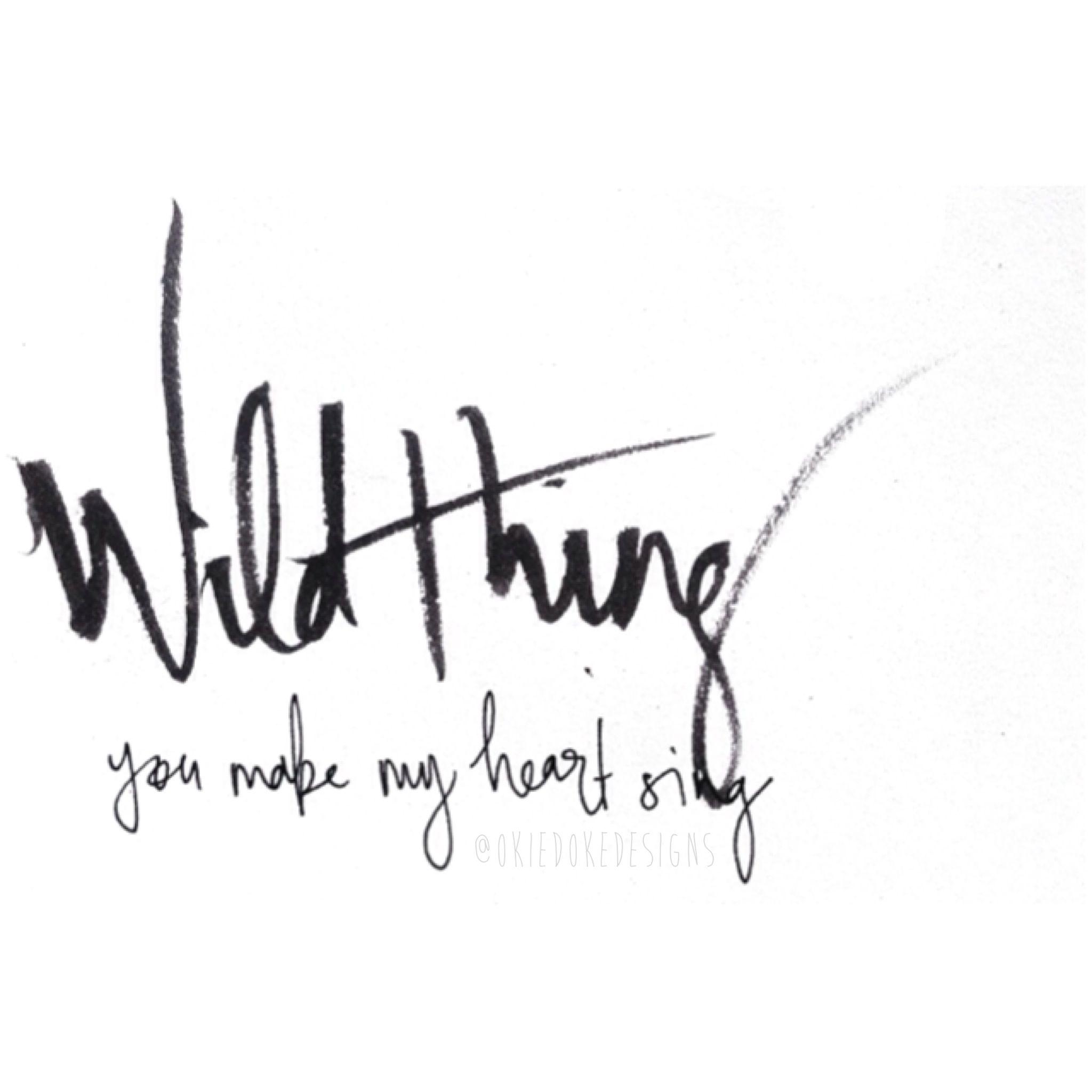 Wild Thing You Make My Heart Sing Okiedokedesigns