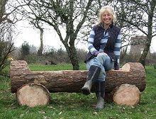 Log Bench Seating Outdoor