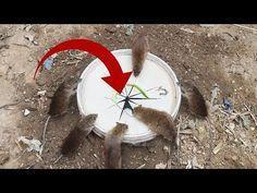 Best Simple Bucket Mouse Trap/Rat Trap - Deep Hole Rat Trap 2019 - YouTube #mousetrap Best Simple Bucket Mouse Trap/Rat Trap - Deep Hole Rat Trap 2019 - YouTube #mousetrap