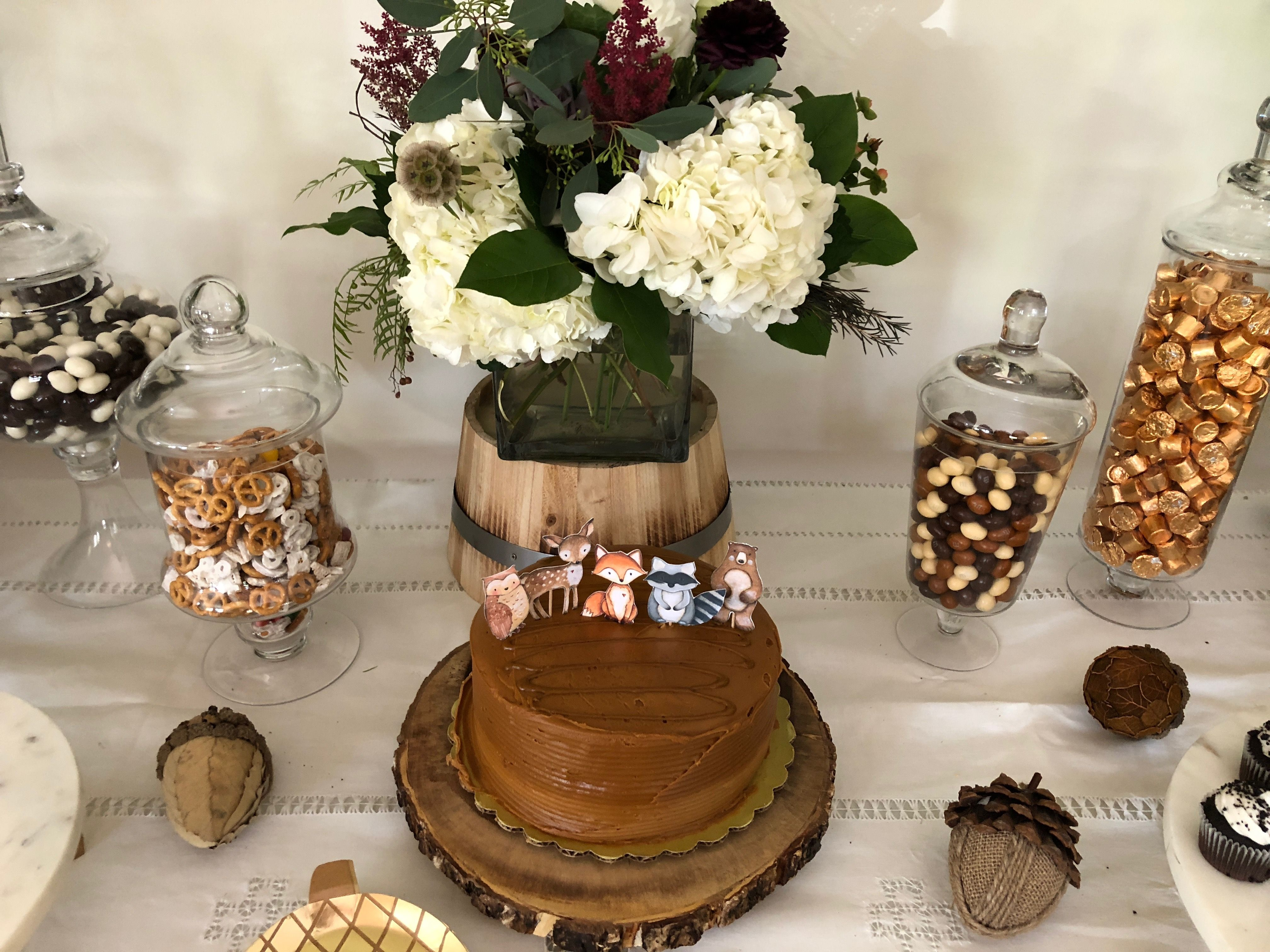 Woodland Themed Baby Shower Cake And Dessert Table Woodland