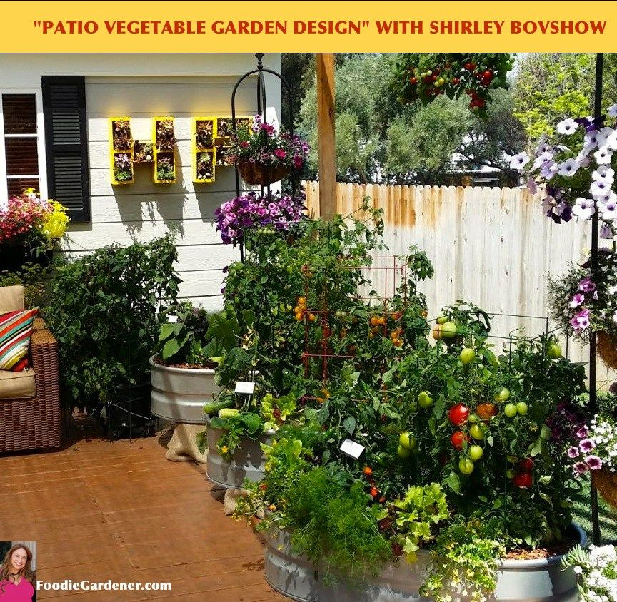 Grow A Container Vegetable Garden On Your Patio Tips Vegetable
