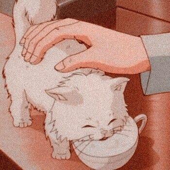 Cats Aesthetic Cartoon 49 Ideas