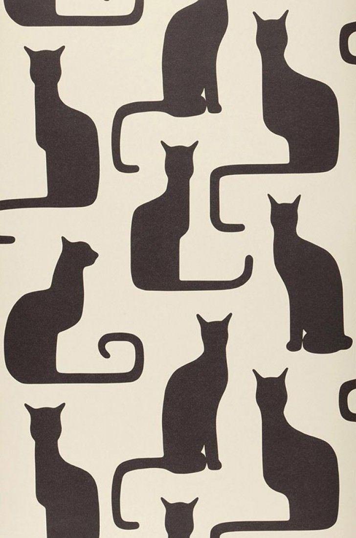 Wallpaper Shiva Black Grey Cat Wallpaper Cat Art Cats Illustration